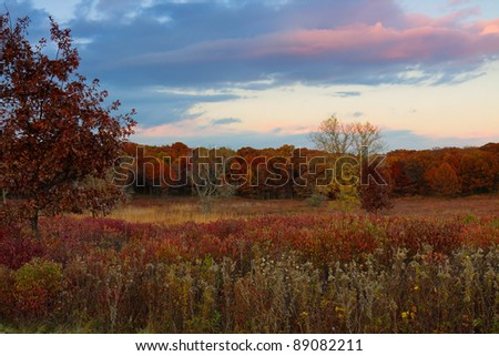 colorful prairie change into oak savanna. the blue and pink hues of the sunset sky are the backdrop for the changing colors grass and woodlands.