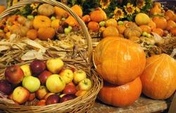 Colorful pumkins and apples in the basket. Harvest market. Tnaksgiving day. Festival