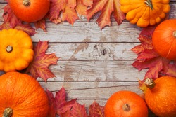 Colorful pumpkin collection frame. Seasonal autumn decorative background with squashes, pumpkins, corns and carrots. Harvest time concept. Top view