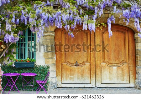 Colorful purple tables of outdoor Parisian cafe and wisteria in full bloom with violet and magenta flowers, Paris, France