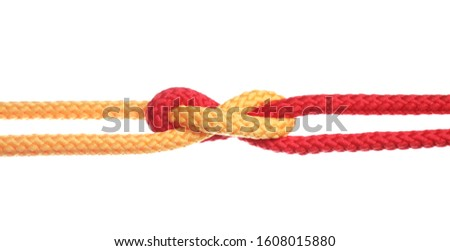 Colorful ropes tied together with knot isolated on white. Unity concept