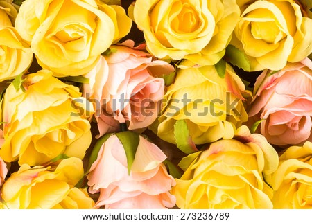 Colorful roses flowers, floral background for mothers day, wedding invitation, greetings card and invitation card