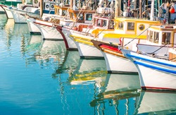 Colorful sailing boats at Fishermans Wharf marina pier in San Francisco Bay in California - Travel concept with wonderful destination in United States of America