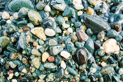 Colorful sea pebbles on the shore close up. Top view, flat lay. Abstract background texture, sea stones in water.