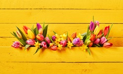 Colorful setting of fresh springtime flowers on yellow background of painted boards with copy space