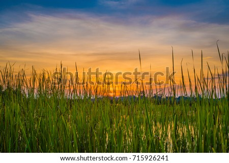 colorful sky at sunset on the lake landscape #715926241
