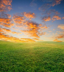 colorful sky summer sunset over green grass field.
