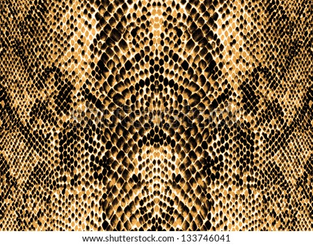 Colorful snake skin texture background