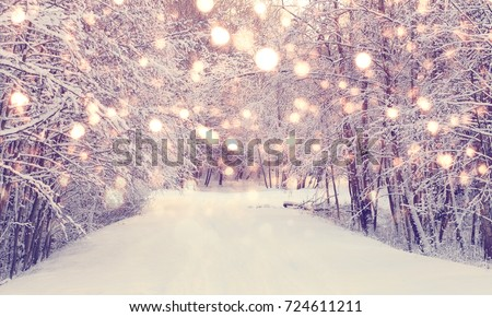 Colorful snowflakes on snowy park background. Christmas background. Xmas snowfall in park.