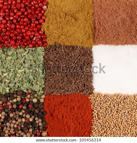 Colorful spices like pepper, paprika, curry and caraway form a square