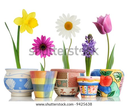 Colorful spring flowers in fun ceramic containers