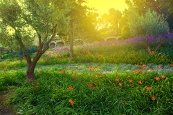 Colorful spring summer park with flowers, green grass and trees