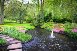 Colorful spring summer park with water, tulip flowers in a sunny day