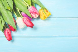 Colorful spring tulip flowers on light blue wooden background as greeting card with free space. Mothersday or spring concept.