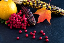 Colorful Squash, Red Maple Leaves, Red Berries on Black Background for Thanksgiving Horizontal