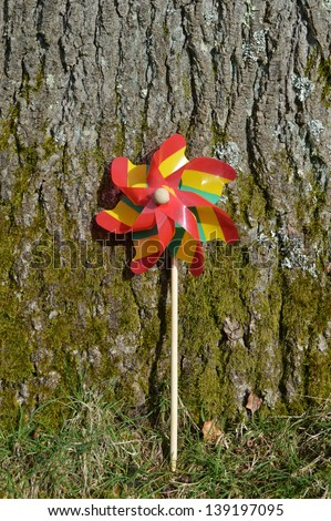 Colorful Striped Pin-wheel against a Tree