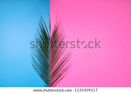Colorful summer female fashion outfit flat-lay. Palm branches on pink blue background, top view. Summer fashion, holiday concept. Punchy Pastels. New Minimalism - Shutterstock ID 1135909217