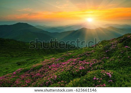 colorful summer landscape in European mountains, east Europe sunrise, around world - Shutterstock ID 623661146