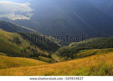 colorful summer landscape in the mountains, wonderful world