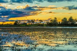 Colorful sunset in Pantanal, Brazil
