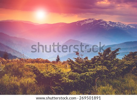 Colorful sunset in the mountains landscape. Dramatic overcast sky. Filtered image:cross processed vintage effect.