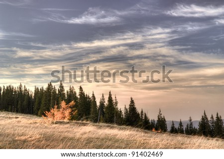 Colorful sunset in Ukrainian mountains