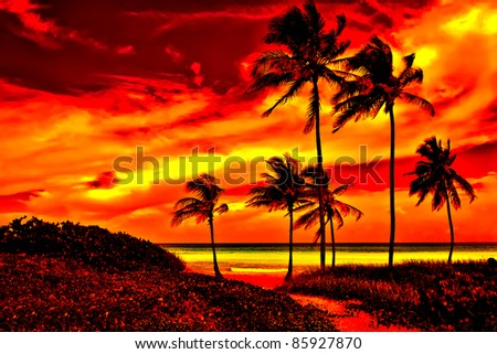 Colorful sunset on a tropical beach