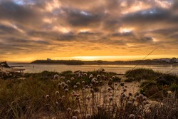 Colorful sunset on the bank of the River Mira, view from Furnas beach amid maritime vegetation in Vila Nova de Milfontes, Vicentine Coast Natural Park PORTUGAL