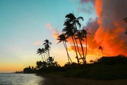 Colorful sunset with palm trees at Kawaikui Beach Park on Oahu, Hawaii