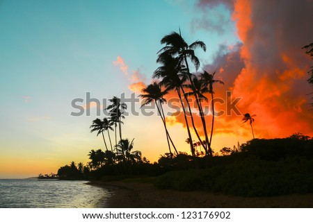 Colorful sunset with palm trees at Kawaikui Beach Park on Oahu, Hawaii