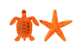 Colorful toys plastic turtle and starfish sea animals close-up, Children's toys for bathing babies isolated on white with clipping path included.