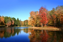 Colorful tree reflections in beautiful lake in Autumn