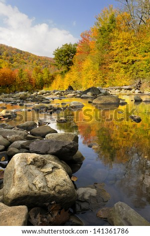 Colorful Trees Reflected in Stream