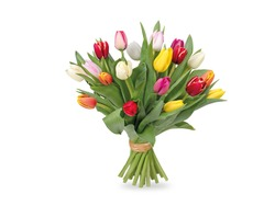 Colorful Tulip Flower Bunch Isolated White Background