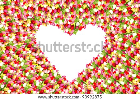 colorful tulip flowers. beautiful flower frame in heart shape