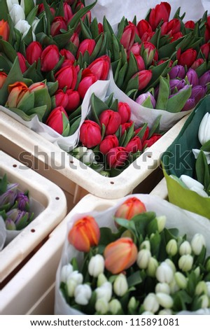 Colorful tulips in Amsterdam flower market