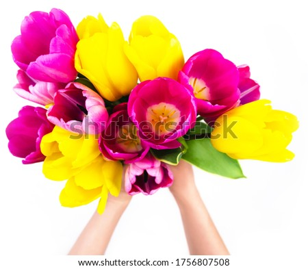 Photo of  Colorful tulips in woman's hands isolated on white. Blur soft focus. Fresh spring bouquet above. Romantic gift. Present for woman. Love sign. Elegant 8 march, birthday, greeting clipart template