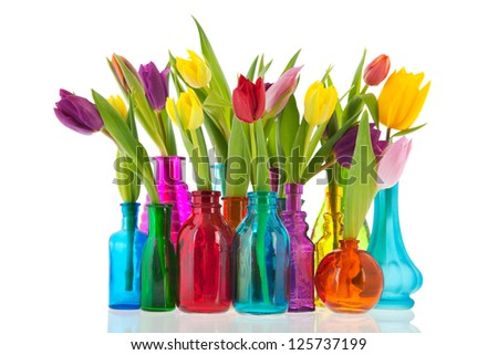 colorful tulips one by one in different glass vases