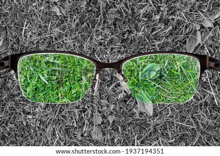 Colorful view of green grass focused in women's glasses and monochrome background. View through eyeglasses. Better vision concept. Different world perception. Stock fotó ©