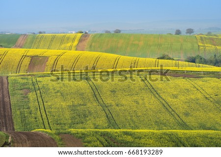 Colorful wavy hills in South Moravia, Czech Republic - Shutterstock ID 668193289