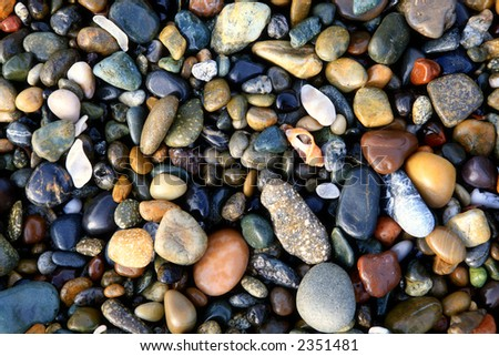 Colorful,wet,beach rocks with seashells