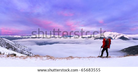 colorful winter landscape in the Carpathian mountains