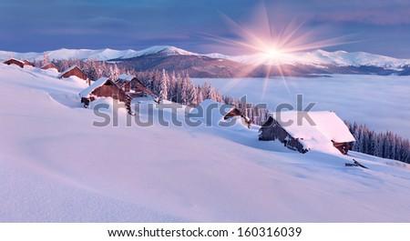 Colorful Winter Morning In The Carpathian Mountains. Glade Pozharska, Carpathian, Ukraine, Europe.