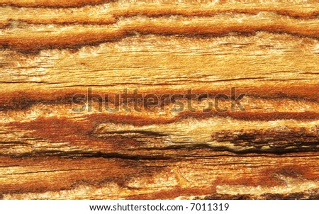 colorful wood skin texture background under sunshine with several parallel stripes.