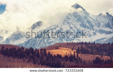 Colorful yellow autumn in Colorado, United States. Fall season. - Shutterstock ID 723332608