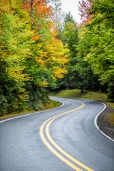 Colorful yellow orange foliage in autumn fall season in Blackwater Falls State Park in West Virginia with paved asphalt curvy winding road driving point of view