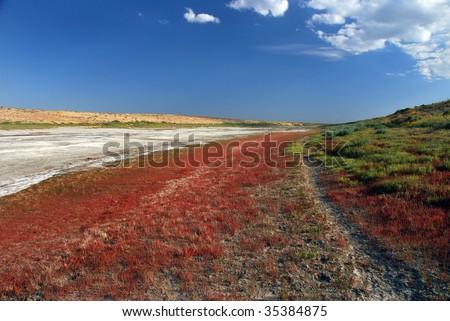 colorfull desert