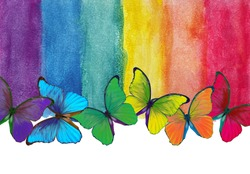 Colors of rainbow. Photo watercolor paper texture. Abstract watercolor background. Wet watercolor paper texture background. bright colorful morpho butterflies. multicolored watercolor stains.
