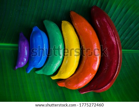 Colourful banana rainbow lgbt symbol on banana leaf art on a gay pride celebration. Lesbian, gay, bisexual, transgender community rights support concept.