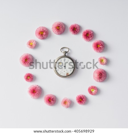 Colourful bright layout made of natural daisy flowers with coffee cup.